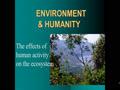 Environment part 2